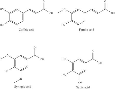 Anticarcenogenesis Activities Of Spices Phenolic Acids