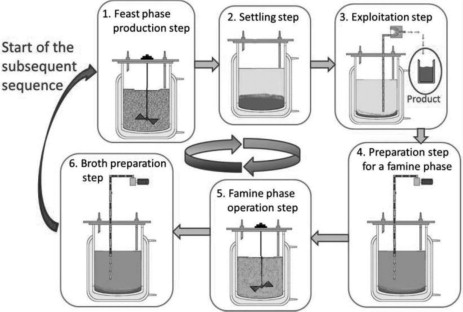 Operation Phase - an overview | ScienceDirect Topics