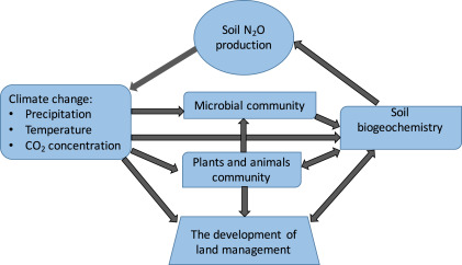 Nitrous Oxide Production From Soils In The Future Processes