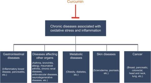 Curcumin From Turmeric as an Adjunct Drug? - ScienceDirect