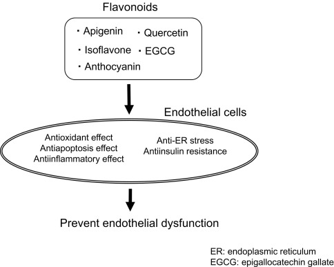 Metabolic Syndrome: Preventive Effects of Dietary Flavonoids