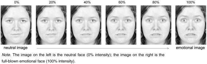 Test your facial expression emotion recognition