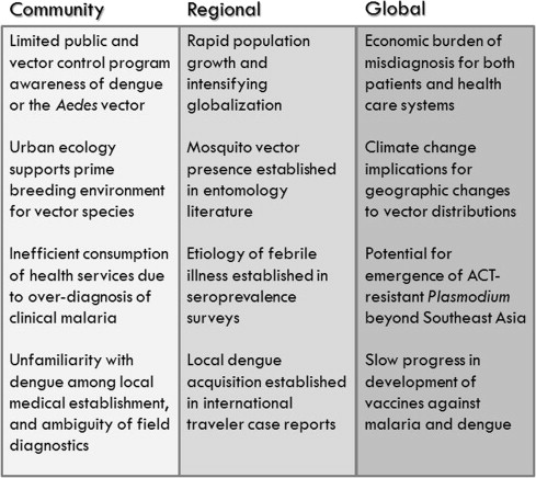 Proposal Essay Community Challenges Malaria Misdiagnosis Mosquito Ecology Sample High School Admission Essays also Health Issues Essay Deconstructing Malaria West Africa As The Next Front For Dengue  English Essays Samples