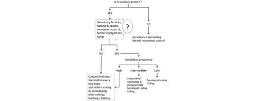 Tuberculosis Test, Causes, Treatment & Prognosis - eMedicineHealth