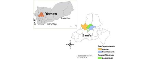 Yemen Life Expectancy 1950-2019   MacroTrends