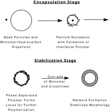 Hollow Latex Particles Synthesis And Applications Sciencedirect