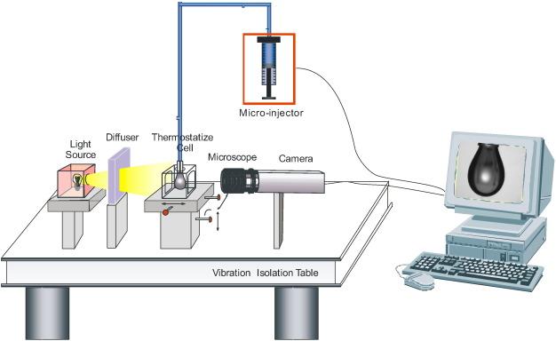 Subphase exchange experiments with the pendant drop technique general experimental setup of a pendant drop instrument mozeypictures Images