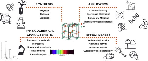 zinc oxide nanoparticles synthesis antiseptic activity and