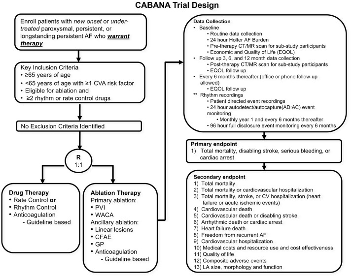 Catheter Ablation versus Antiarrhythmic Drug Therapy for Atrial