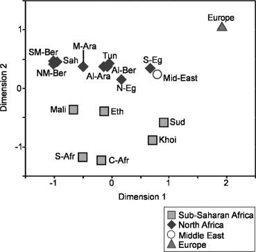 A Predominantly Neolithic Origin for Y-Chromosomal DNA