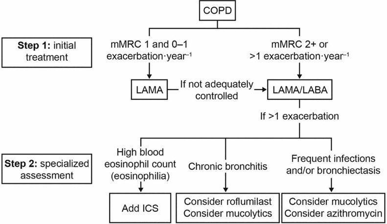 The Role Of Fixed Dose Dual Bronchodilator Therapy In