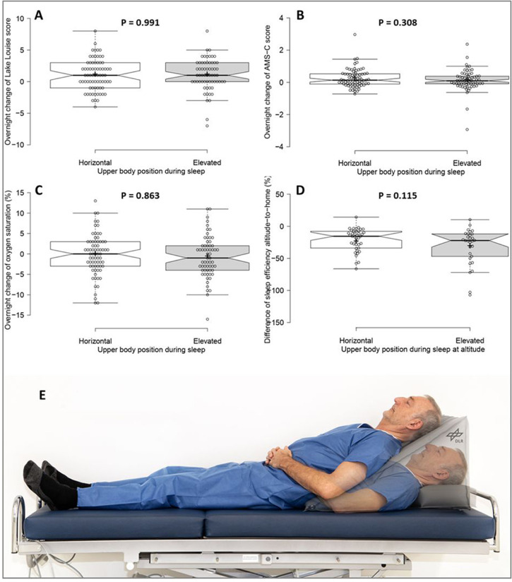 Elevated Upper Body Does Not Attenuate