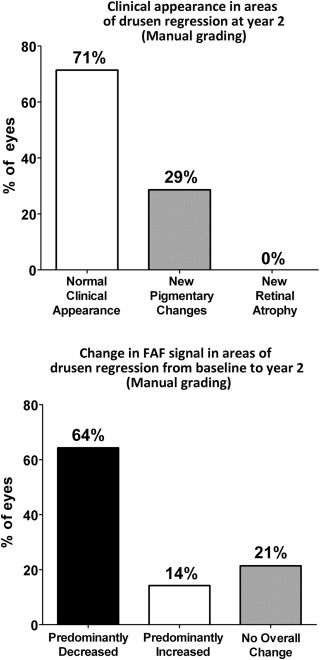 Drusen Regression is Associated With Local Changes in Fundus