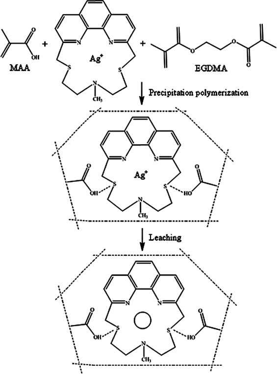 Silver Ion Imprinted Polymer Nanobeads Based On A Aza Thioether