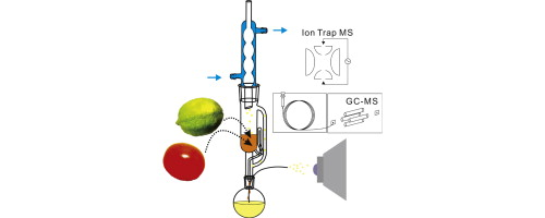 On Line Monitoring Of Soxhlet Extraction By Chromatography And Mass Spectrometry To Reveal Temporal Extract Profiles Sciencedirect