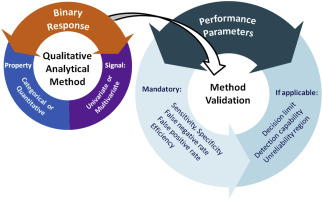 A tutorial on the validation of qualitative methods: From