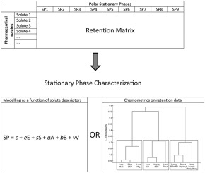 Is the solvation parameter model or its adaptations adequate to