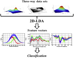 Two-dimensional linear discriminant analysis for