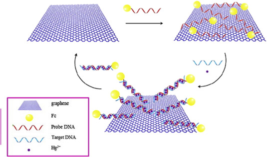 Graphene-based materials for the electrochemical determination of