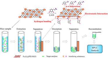 Magnetic polyethyleneimine functionalized reduced graphene
