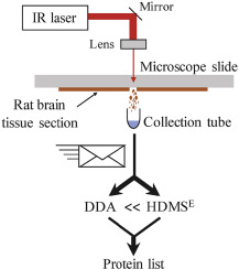 Infrared laser ablation sampling coupled with data independent high