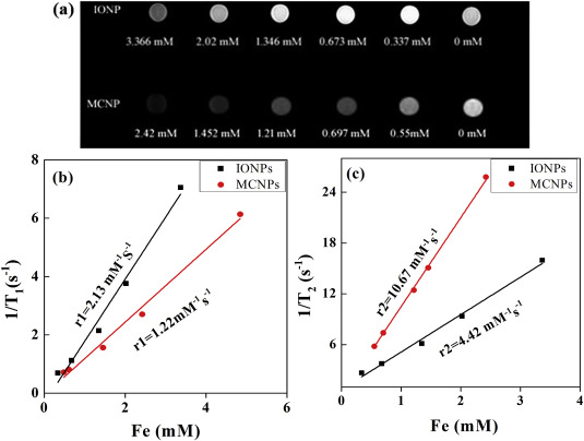 Multifunctional iron oxide-carbon hybrid nanoparticles for targeted