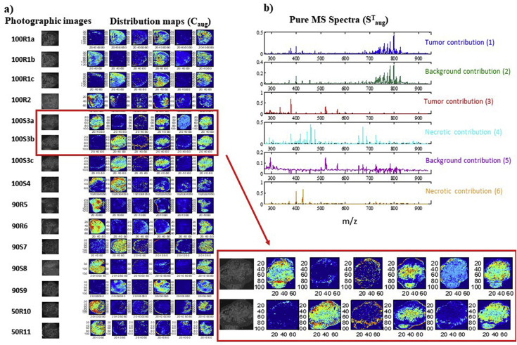 Use of physiological information based on grayscale images to