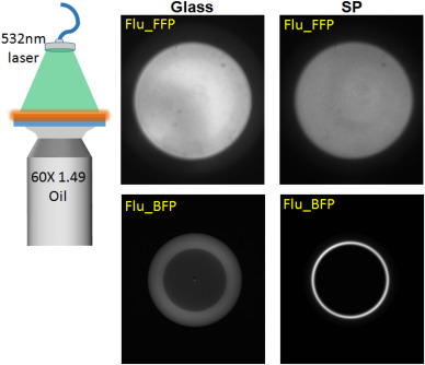 Radiative decay engineering 8: Coupled emission microscopy for lens