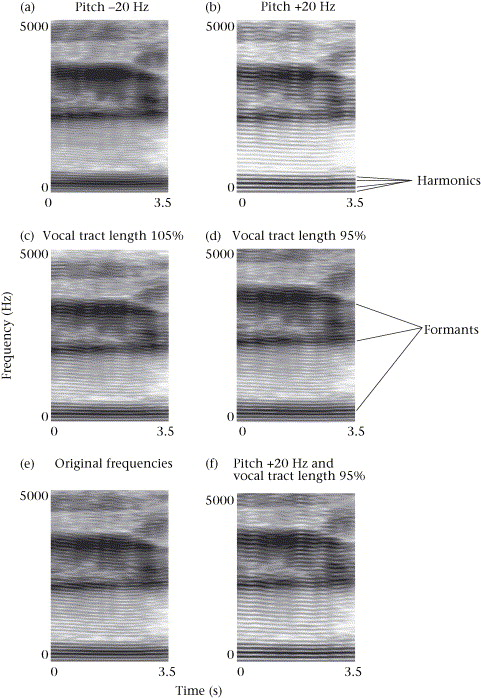 Manipulations of fundamental and formant frequencies