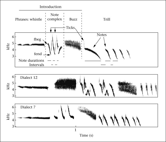 Segregation Of Information In A Complex Acoustic Signal Individual