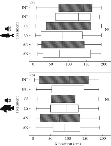 Behavioural responses to sound exposure in captivity by two