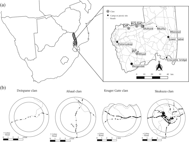 Social Networks Of Spotted Hyaenas In Areas Of Contrasting Human