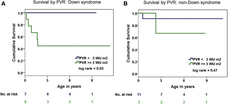 Survival in Children With Down Syndrome Undergoing Single