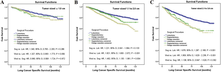 Survival Rates After Lobectomy, Segmentectomy, and Wedge