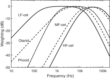 Practical implementation of auditory time and frequency weighting in