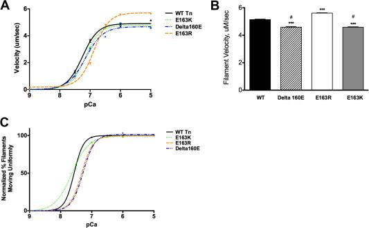 Allosteric effects of cardiac troponin TNT1 mutations on