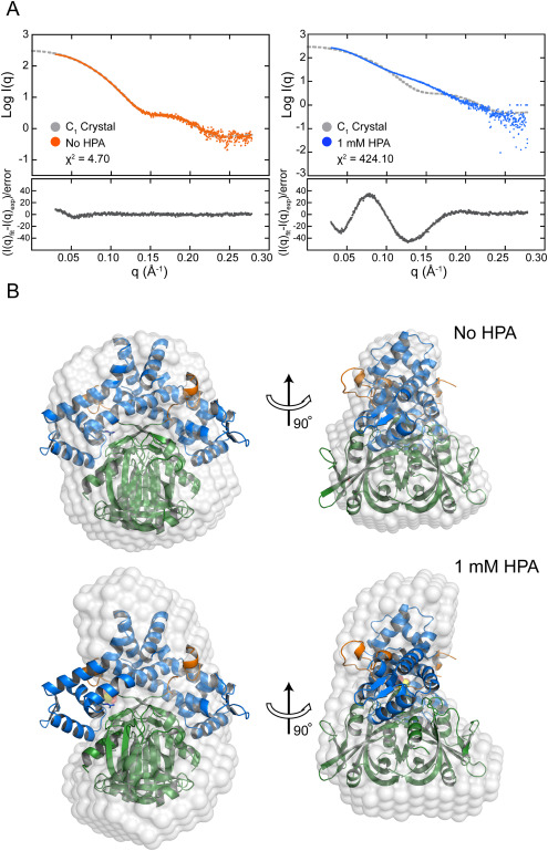 Crystal structure of the flavin reductase of Acinetobacter baumannii