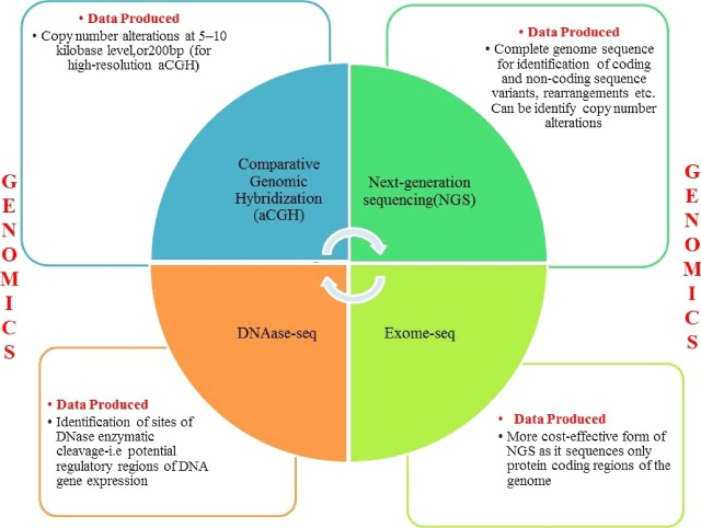 "Omics"" in oral cancer: New approaches for biomarker"