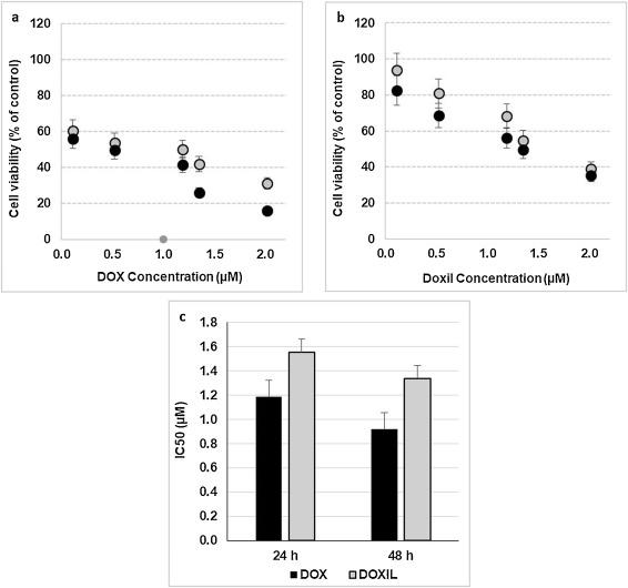 Liposome-coated nano doxorubicin induces apoptosis on oral squamous