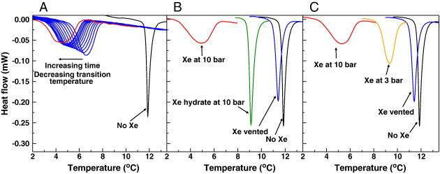 Biophysical Changes Induced By Xenon On Phospholipid Bilayers