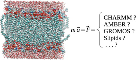 Structure and Dynamics of Membranes. Generic and Specific Interactions
