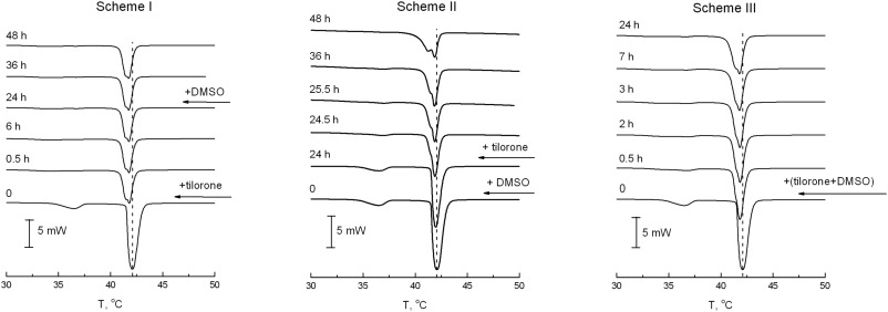 Thermodynamics and kinetics of joint action of antiviral agent