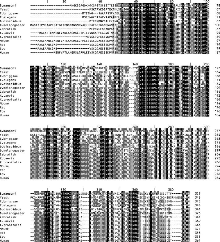 Oxamnikin – Wikipédia