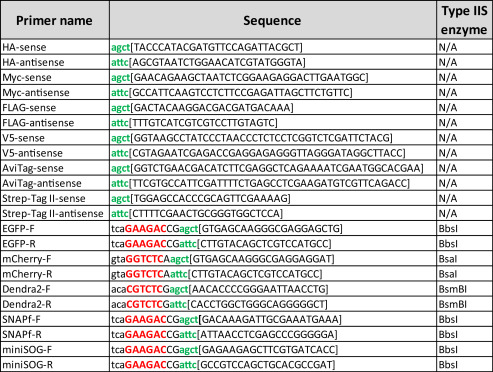 Note That Different Tags May Require Type IIS Restriction Enzymes BsaI BbsI And BsmBI To Avoid Internal Cleavage In The Tag