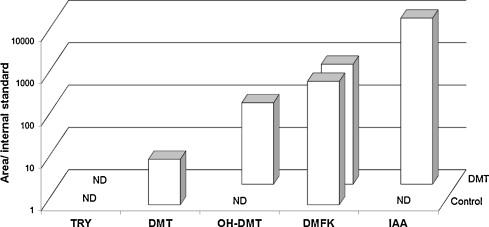 Biosynthesis of N,N-dimethyltryptamine (DMT) in a melanoma