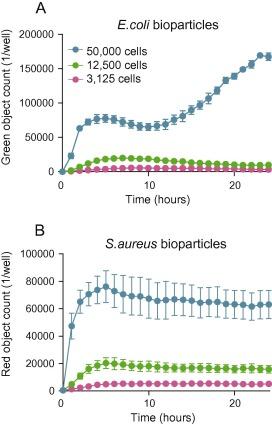 A novel real time imaging platform to quantify macrophage