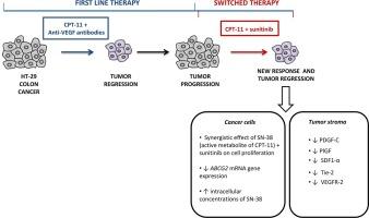 colorectal cancer progression