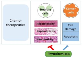 The potential use of natural products to negate hepatic