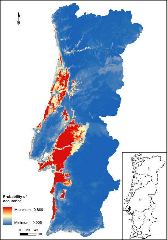 Influence of macrohabitat preferences on the distribution of