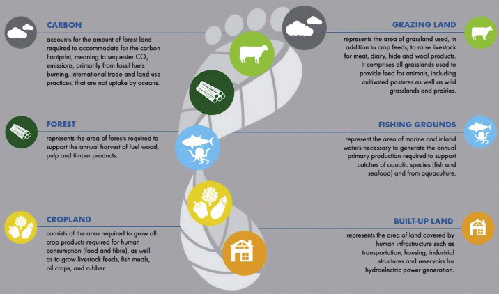 Ecological Footprint Implications for biodiversity ScienceDirect – Ecological Footprint Worksheet
